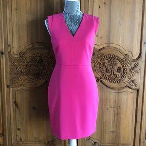 Hot pink Banana Republic lined sheath dress Size 4
